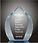 Elegance Acrylic Award Colored Acrylic Awards